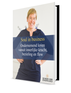 E-book Soul in business
